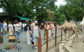 גן החיות בודפשט - Budapest Zoo
