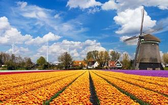 מלונות כשרים בהולנד
